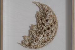 SENSI ARTE, Nubium luna crescente, combustioni su carta e fili, cm 40 x 40 x 6