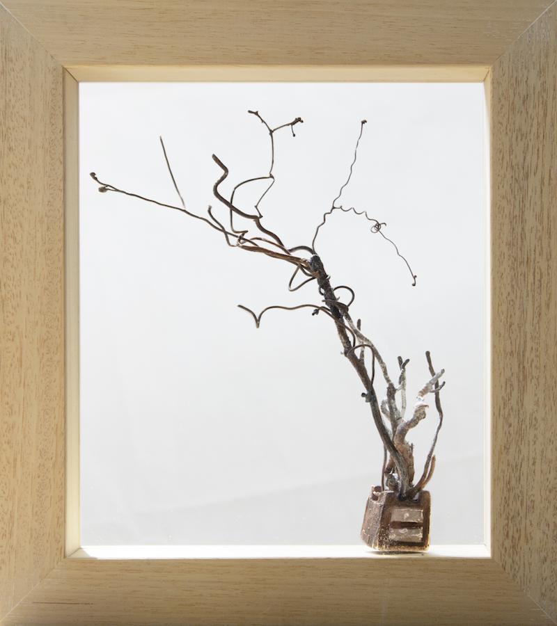 SENSI ARTE, Anche le cose hanno radici, comodino bronzo e legno, cm26 x 29