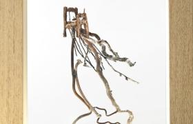 Anche le cose hanno le radici letto, bronzo e legno, 26 x 29