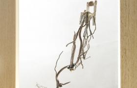Anche le cose hanno le radici sedia , bronzo e legno, 26 x 29