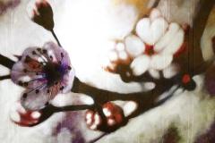 SENSI-ARTE_Polline-acrilico-su-tela-cm180-x-120_BRLM_35