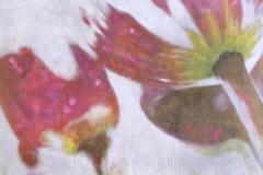 SENSI ARTE_Tulip, acrilico su tela cm 120 x 150, 2017_BRLM_07